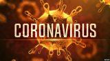 Koronavírus – Prof. MUDr. Vladimír Krčméry, DrSc. -dokument