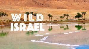 Krásy divokého Izraele (komplet 1-5) -dokument