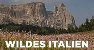 Krásy divoké Itálie (komplet 1-2) -dokument
