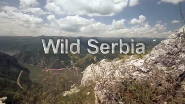 Krásy divokého Srbska -dokument