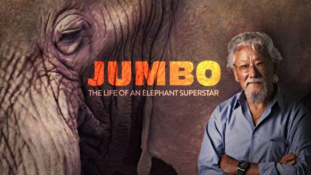 David Attenborough a legendární obří slon Jumbo -dokument