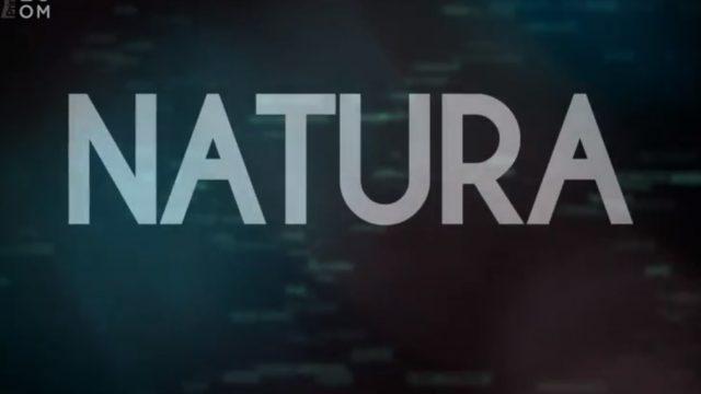 Mozek a příroda -dokument