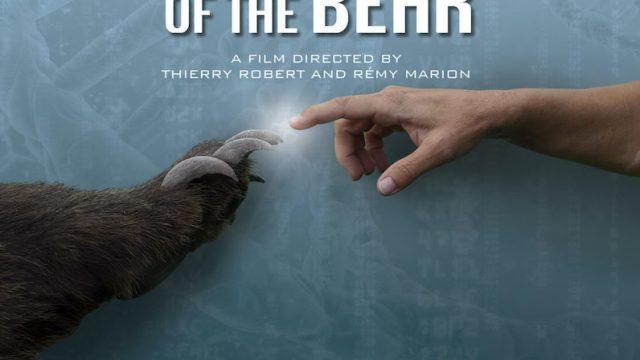 Superschopnosti medvědů -dokument