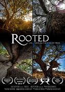 Příběh pěti stromů (komplet 1-5) -dokument