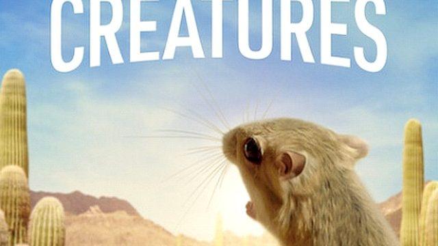 Nejmenší drobečci / Tiny Creatures (komplet 1-8) -dokument </a><img src=http://dokumenty.tv/eng.gif title=ENG> <img src=http://dokumenty.tv/cc.png title=titulky>