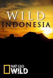 Divoká Indonésie (komplet 1-3) -dokument