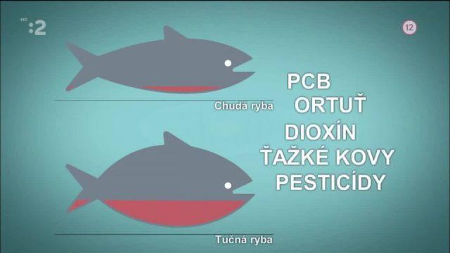 Nezdravé ryby -dokument