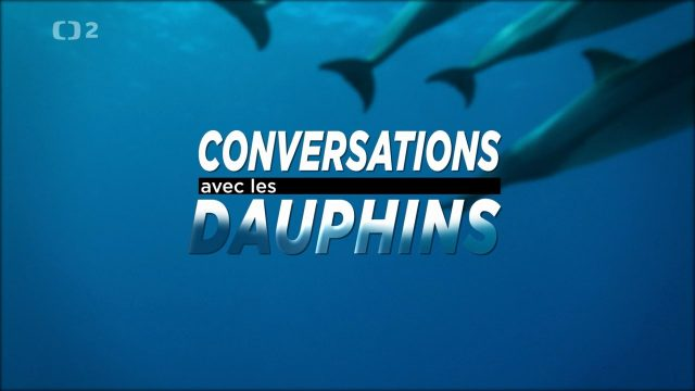 Komunikace s delfíny / Hovory s delfíny (komplet 1-2) -dokument