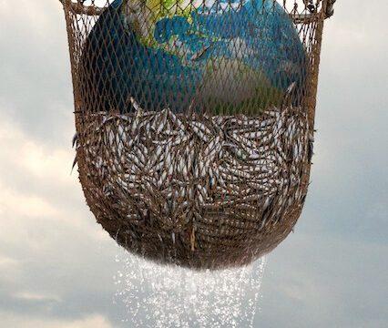 Seaspiracy: Pravá tvář udržitelného rybolovu -dokument  </a><img src=http://dokumenty.tv/eng.gif title=ENG> <img src=http://dokumenty.tv/cc.png title=titulky>