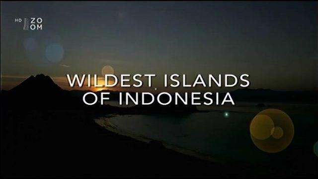 Nejdivočejší ostrovy Indonésie (komplet 1-5) -dokument