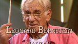 Leonard Bernstein učí mladé hudebníky -dokument