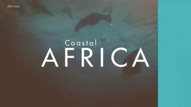 Krásy afrického pobřeží (komplet 1-4) -dokument
