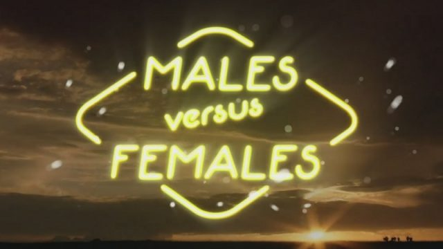 Samci versus samice (komplet 1-3) -dokument