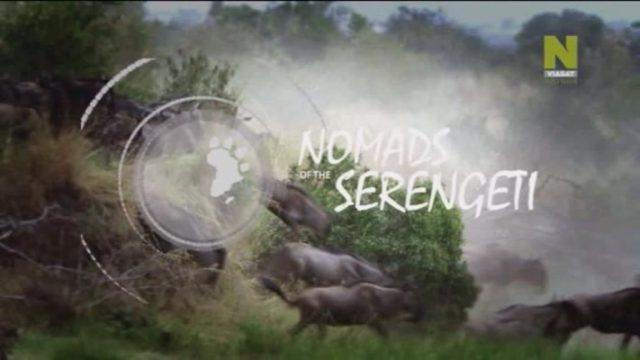 Nomádi ze Serengeti (komplet 1-5) -dokument